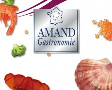 "Download the catalog ""Amand Gastronomie"" in PDF format"