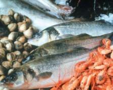 LES ATOUTS NUTRITIONNELS DES PRODUITS DE LA MER